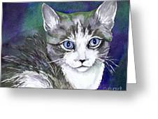 Grey And White Kitten Greeting Card by Cherilynn Wood