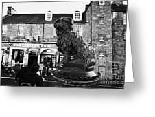 Greyfriars Bobby Statue In Front Of The Bar Candlemaker Row Edinburgh Greeting Card by Joe Fox