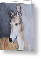 Greyhound In Thought Greeting Card by George Pedro
