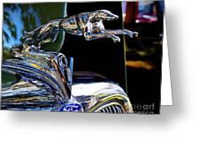 Greyhound Power Greeting Card by Richard Burr