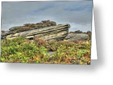 Gritstone Outcrop - Colour Greeting Card by Steev Stamford