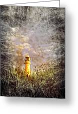 Grunge Light House Greeting Card by Svetlana Sewell