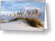 Gulf Dunes Greeting Card by Eric Foltz