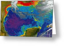 Gulf Of Mexico Dead Zone Greeting Card by Science Source