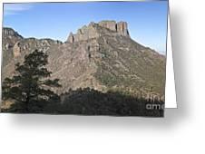 Habitat Transition Greeting Card by Greg Dimijian