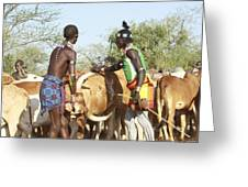 Hamer Tribe Jumping Of The Bulls Ceremony Greeting Card by Photostock-israel