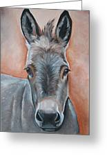 Handsome Hank Greeting Card by Laura Carey