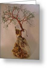 Hanging It Up Greeting Card by Judy Byington