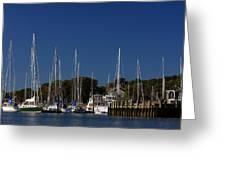 Harbor View Greeting Card by Karol  Livote