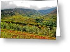 Hatcher Pass - Alaska Greeting Card by Cheryl Colaw