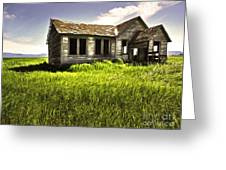 Haunted Shack In Idaho Greeting Card by Gregory Dyer