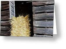 Hay-day Greeting Card by Todd Sherlock