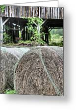 Hay Greeting Card by JC Findley