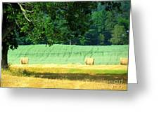 Hay Landscape Greeting Card by France Laliberte
