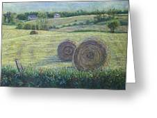 Haybales Durham County Greeting Card by Ruth Greenlaw