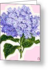 Hazy Hydrangea Greeting Card by Mary M Collins