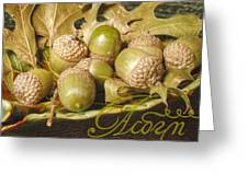Hdr Green Acorns In A Dish Greeting Card by Jennifer Holcombe