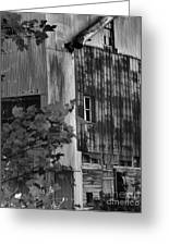 Hearns Feed Mill Greeting Card by Tamera James