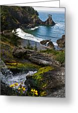 Hidden Cove Greeting Card by Jake Johnson