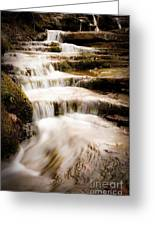 Hidden Falls Greeting Card by Tamyra Ayles