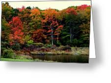 Hidden Valley Lake Greeting Card by Karen Wiles