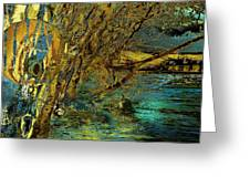 High Water In The Meadows Greeting Card by Anne Weirich
