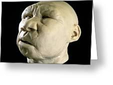 Homo Heidelbergensis Reconstruction Greeting Card by Javier Truebamsf