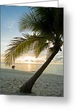Honduras, Roatan Island,  West Bay Greeting Card by Richard Nowitz