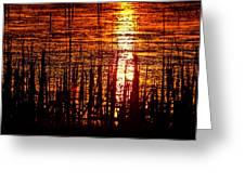 Horicon Marsh Sunset Wisconsin Greeting Card by Steve Gadomski