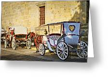 Horse Drawn Carriages In Guadalajara Greeting Card by Elena Elisseeva