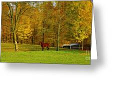 Horse In Autumn Greeting Card by Kathleen Struckle