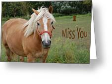 Horse Miss You Greeting Card by Aimee L Maher Photography and Art