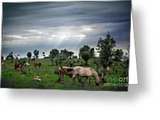 Horses Eating Greeting Card by Carlos Caetano