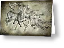 Horses Greeting Card by Svetlana Sewell
