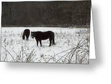 Horses Two Greeting Card by Ross Powell