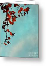 Hot And Cold Greeting Card by Aimelle
