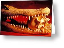 Human Skull  Alligator Skull Greeting Card by Garry Gay