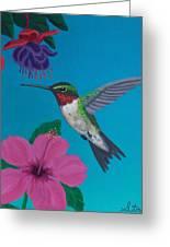 Hummingbird Heaven Greeting Card by Frank Strasser