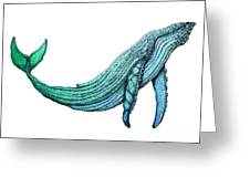 Humpback Whale Greeting Card by Nick Gustafson