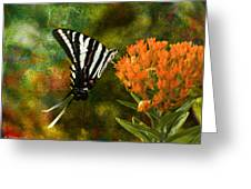 Hungry Little Butterfly Greeting Card by J Larry Walker