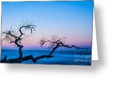 Hunting Island Sunrise I Greeting Card by David Waldrop