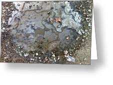 Ice On The Rocks Greeting Card by Elijah Brook