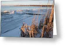 Ice Shoreline Greeting Card by Merv Scoble