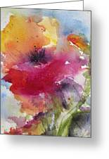 Iceland Poppy Greeting Card by Anne Duke