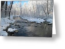 Icing On The Trees Greeting Card by Sandy Tracey