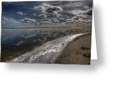 Icy Winter Beach Greeting Card by Vicki Jauron