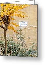 Il Piazza Malcontenti Greeting Card by Michael Flood