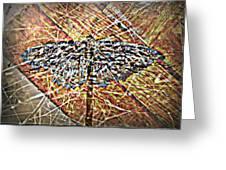 Illusory Appearances Greeting Card by Paulo Zerbato