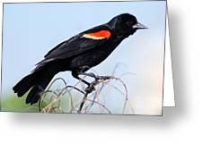 I'm Like A Bird Greeting Card by Elizabeth Chevalier