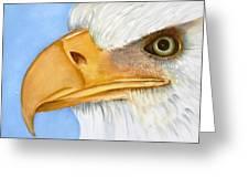 Image 1147b Bold Eagle 1 Greeting Card by Wilma Manhardt